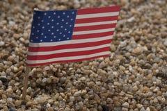 Modello della bandiera unita di Stats Fotografia Stock Libera da Diritti