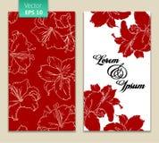 Modello della carta con i fiori rossi Fotografie Stock