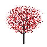 Modello della carta del biglietto di S. Valentino con l'albero con le foglie in forma di cuore Fotografia Stock