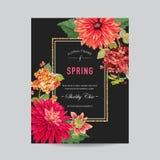 Modello della disposizione dell'invito di nozze con i fiori rossi degli aster Conservi la carta floreale della data con i fiori e illustrazione di stock