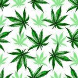 Modello della foglia della marijuana Immagine Stock