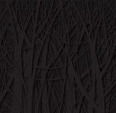 Modello della foresta Immagini Stock