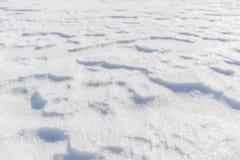 Modello della neve Fotografia Stock Libera da Diritti