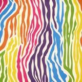 Modello della pelle della zebra Fotografia Stock