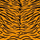 Modello della pelle della tigre illustrazione vettoriale