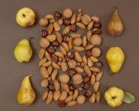 Modello della pera e del dado di autunno su fondo marrone Fotografie Stock
