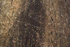 Modello della roccia Fotografie Stock Libere da Diritti