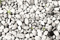 Modello della roccia Fotografia Stock Libera da Diritti