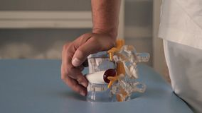 Modello della spina dorsale in mani di medico video d archivio
