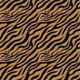 Modello della zebra Fotografia Stock Libera da Diritti