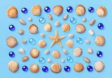 Modello delle conchiglie, delle stelle marine e delle perle di vetro blu su un fondo blu-chiaro Fotografia Stock Libera da Diritti