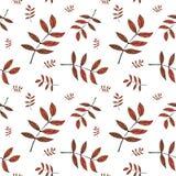 Modello delle foglie Immagine Stock