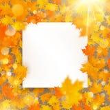 Modello delle foglie di acero di autunno con la carta di Libro Bianco ENV 10 royalty illustrazione gratis