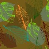 Modello delle foglie di autunno illustrazione vettoriale