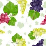 Modello delle foglie di autunno con l'uva illustrazione vettoriale