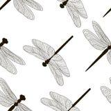 Modello delle siluette delle libellule Fotografie Stock Libere da Diritti