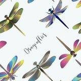 Modello delle siluette delle libellule Immagine Stock