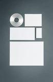 Modello di affari del modello con le carte, carte, disco Immagine Stock