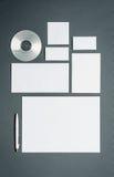 Modello di affari del modello con le carte, carte, disco Immagini Stock Libere da Diritti