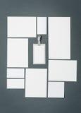 Modello di affari del modello con le carte, carte, penna Fondo grigio Fotografia Stock Libera da Diritti