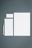 Modello di affari del modello con le carte, carte, penna Fondo grigio Immagini Stock Libere da Diritti