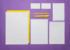 Modello di affari del modello con le carte, carte, penna Fondo lilla Fotografia Stock Libera da Diritti