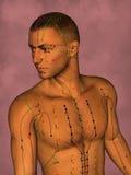 Modello di agopuntura, illustrazione 3D Fotografie Stock