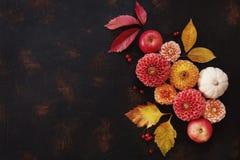 Modello di Autumn Floral con le dalie, la zucca e le foglie di autunno fotografie stock libere da diritti