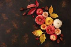 Modello di Autumn Floral con le dalie, la zucca e le foglie di autunno fotografia stock