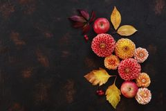 Modello di Autumn Floral con le dalie, le mele e le foglie di autunno immagine stock libera da diritti