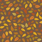 Modello di Autumn Floral Seamless Different Leaves Fotografie Stock Libere da Diritti