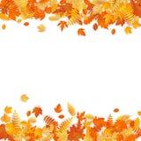 Modello di autunno con le foglie dorate della quercia e dell'acero ENV 10 illustrazione vettoriale