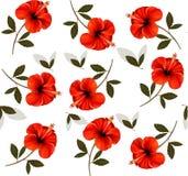 Modello di bei fiori rossi Immagine Stock