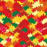 Modello di caduta di Autumn Background Abstract Leaves Square per le vostre insegne, carte da parati, spedizione, progettazione,  Fotografia Stock