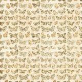 Modello di farfalla floreale Fotografie Stock Libere da Diritti
