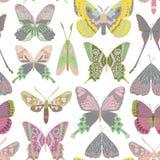 Modello di farfalla di vettore Immagini Stock