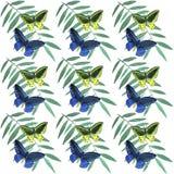 Modello di farfalle tropicale dell'acquerello Immagini Stock Libere da Diritti