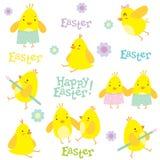 Modello di festa di Pasqua con i piccoli polli e decorazioni Immagine Stock
