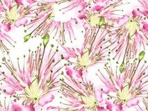 Modello di fiore audace illustrazione di stock
