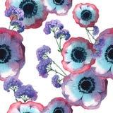 Modello di fiore del papavero del Wildflower in uno stile dell'acquerello isolato illustrazione vettoriale