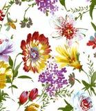 Modello di fiore dell'acquerello su bianco royalty illustrazione gratis