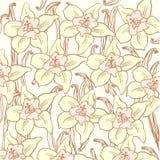 Modello di fiore della vaniglia Immagine Stock Libera da Diritti