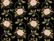 Modello di fiore delle rose in un vettore Fotografia Stock Libera da Diritti