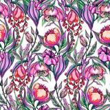 Modello di fiore di vettore del materiale illustrativo Fotografie Stock Libere da Diritti