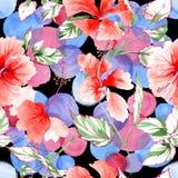 Modello di fiore rosa del Wildflower in uno stile dell'acquerello royalty illustrazione gratis