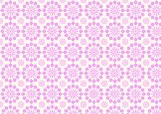 Modello di fiore rosa moderno d'annata su colore pastello Immagine Stock Libera da Diritti