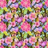Modello di fiore senza cuciture con la farfalla Fotografie Stock