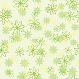 Modello di fiore verde chiaro Immagini Stock