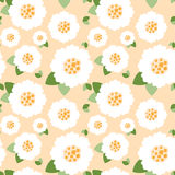 Modello di fiori bianchi senza cuciture Fotografia Stock Libera da Diritti