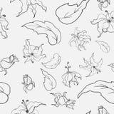 Modello di fiori in bianco e nero Fotografie Stock Libere da Diritti